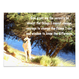 The Serenity Prayer Photo Print