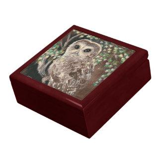 The Serious Owl Keepsake Box