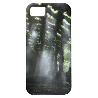 The Shaded Path iPhone 5 Covers