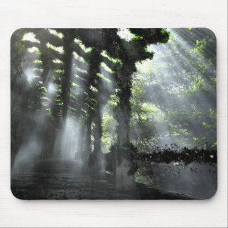 The Shaded Path (Mousepad)