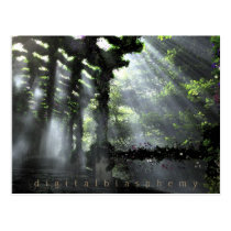 flowers, path, shadows, forest, light, summer, spring, Postcard with custom graphic design
