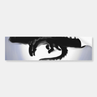 The Shadow in the Light Bumper Sticker