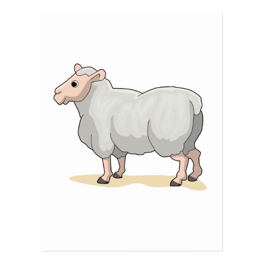 The Sheep Postcard