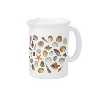 The Shell Collector Pitcher