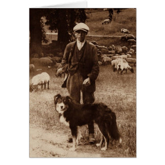 """The Shepherd""~Border Collie Notecard Greeting Card"