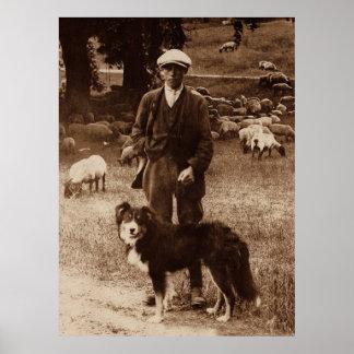 """The Shepherd""~Border Collie Poster"