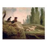 The Shepherd Postcard