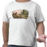 The Shepherd T-shirt
