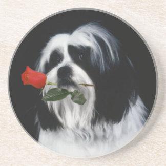 The Shih Tzu Dog Coaster