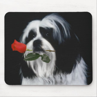 The Shih Tzu Dog Mouse Pad