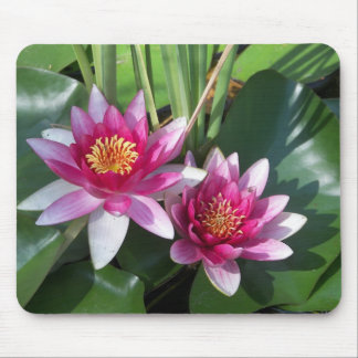 """The Shrine of St. Joseph of the Mountains"" flower Mouse Pad"