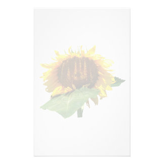 The Shy Sunflower Stationery