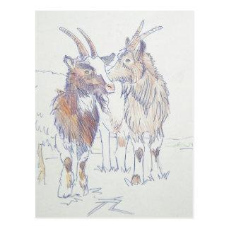The siblings postcard
