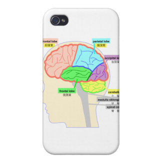 The simple figure which watched the part of the br iPhone 4 case