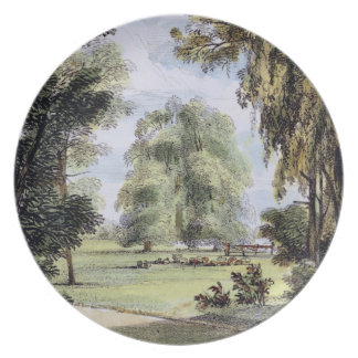 The Sister Trees, Kew Gardens, plate 8 from 'Kew G