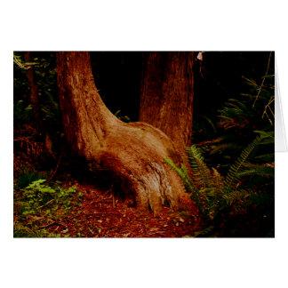 The Sitting Tree Card
