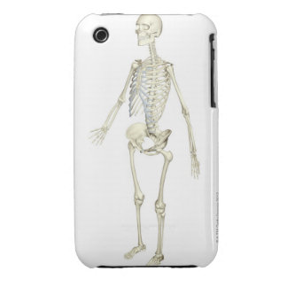 The Skeletal System Case-Mate iPhone 3 Cases
