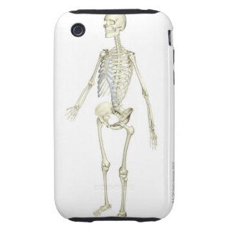 The Skeletal System Tough iPhone 3 Covers