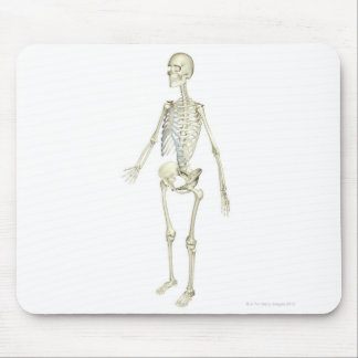 The Skeletal System Mouse Pad