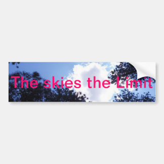 The Skies the Limit Bumper Sticker