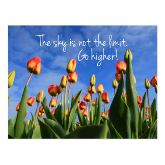 The Sky is Not the Limit Go Higher Postcard