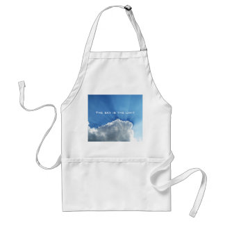 The sky is the limit adult apron
