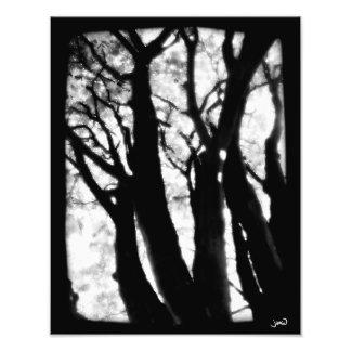 The Sky With Diamonds (No. 2) Photo Print