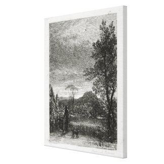 The Skylark (etching) Canvas Prints