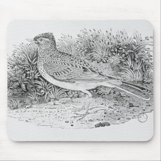 The Skylark Mouse Pad