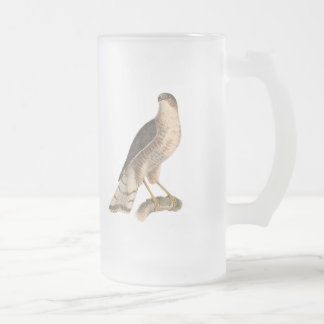 The Slate-colored Hawk	(Astur fuscus) Frosted Glass Beer Mug