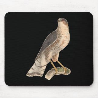 The Slate-colored Hawk(Astur fuscus) Mouse Pad