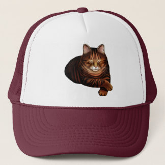 The Sleeping Brown Tabby Cat Hat