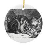 The Sleeping Cat Artwork Ceramic Ornament