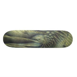 The Sleeping Nautilus Skateboard