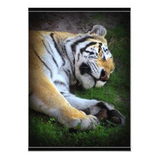 The Sleeping Tiger Card