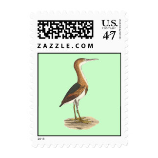 The Small Bittern	(Ardea exilis) Postage