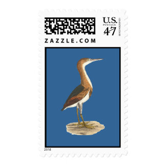 The Small Bittern	(Ardea exilis) Stamp