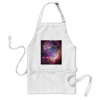 The Small Magellanic Cloud Adult Apron