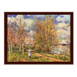 The Small Meadows In Spring,  By Alfred Sisley Postcards