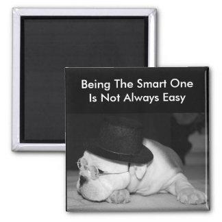 """The Smart One""...English Bulldog Puppy Magnet"