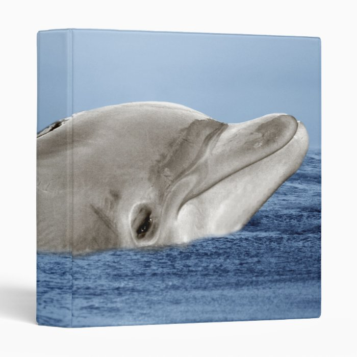 The smiling dolphin 3 ring binder