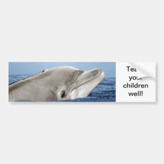 The smiling dolphin bumper sticker