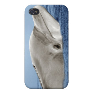 The smiling dolphin cases for iPhone 4