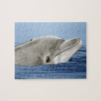The smiling dolphin jigsaw puzzle