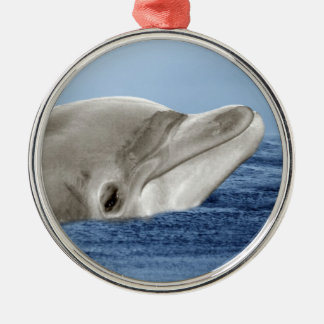 The smiling dolphin metal ornament