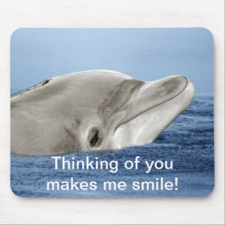 The smiling dolphin mouse pad
