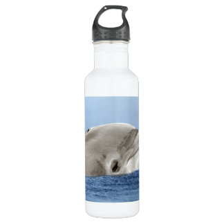 The smiling dolphin water bottle