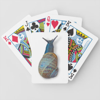 The snail bicycle playing cards