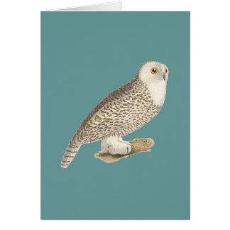 The Snow Owl(Surnia nyctea) Greeting Card