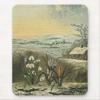 The Snowdrop Mouse Pads